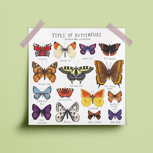 Print - Types of Butterflies