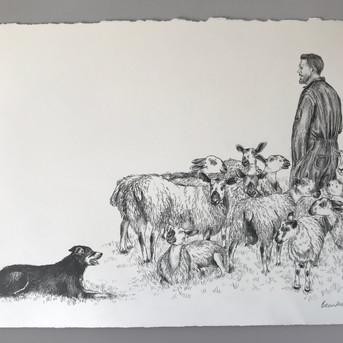 Man and his Sheep.