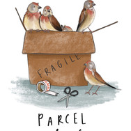 Parcel of Linnets