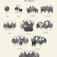 Cumbrian Numbers