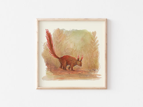 Print - Red Squirrel
