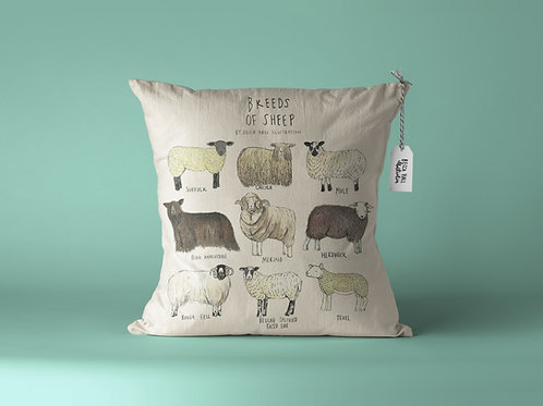 Cushion - Breeds of Sheep