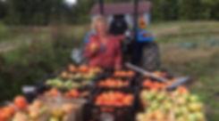 tomatoes_edited_edited_edited.jpg