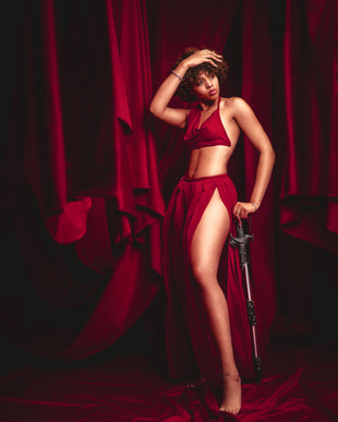 The red room with Brittany st James