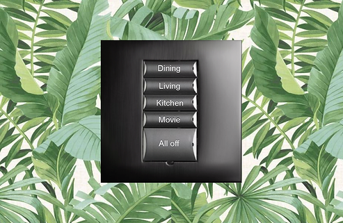 Control4-HOMEAUTOMATION.png