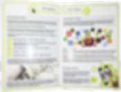 Brochure- Intro page.png