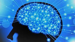 brain spiritual intelligence.jpg