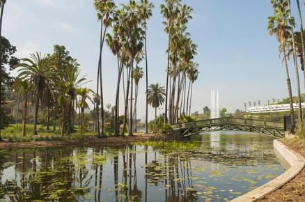 Echo Park Lake 2