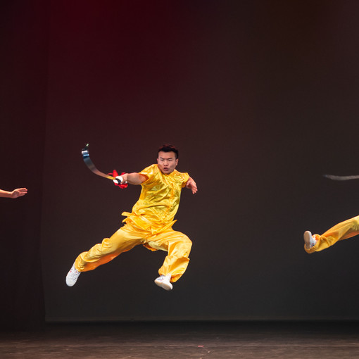 Chinese New Year gala 2018