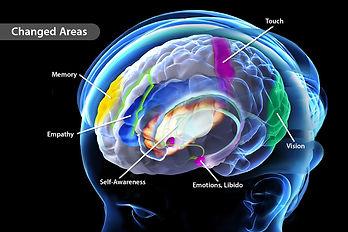 1800ss_science_source_rm_meditation.jpg