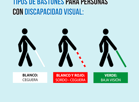 Tipos de bastones para personas con discapacidad visual.