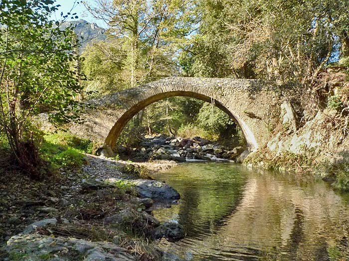 pont-genois