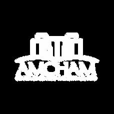 logo-amcham-abe-03.png