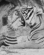 Conférence ludique - Petite fille - Tigre