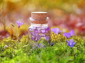 Herbalista - Bilde til Naturprodukter-ku