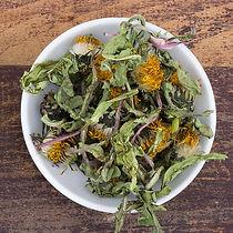 medicinal-herbs-5952560_1920.jpg