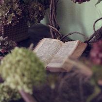 book-1210027_1920.jpg