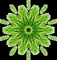 Herbalista - Dandelion.png