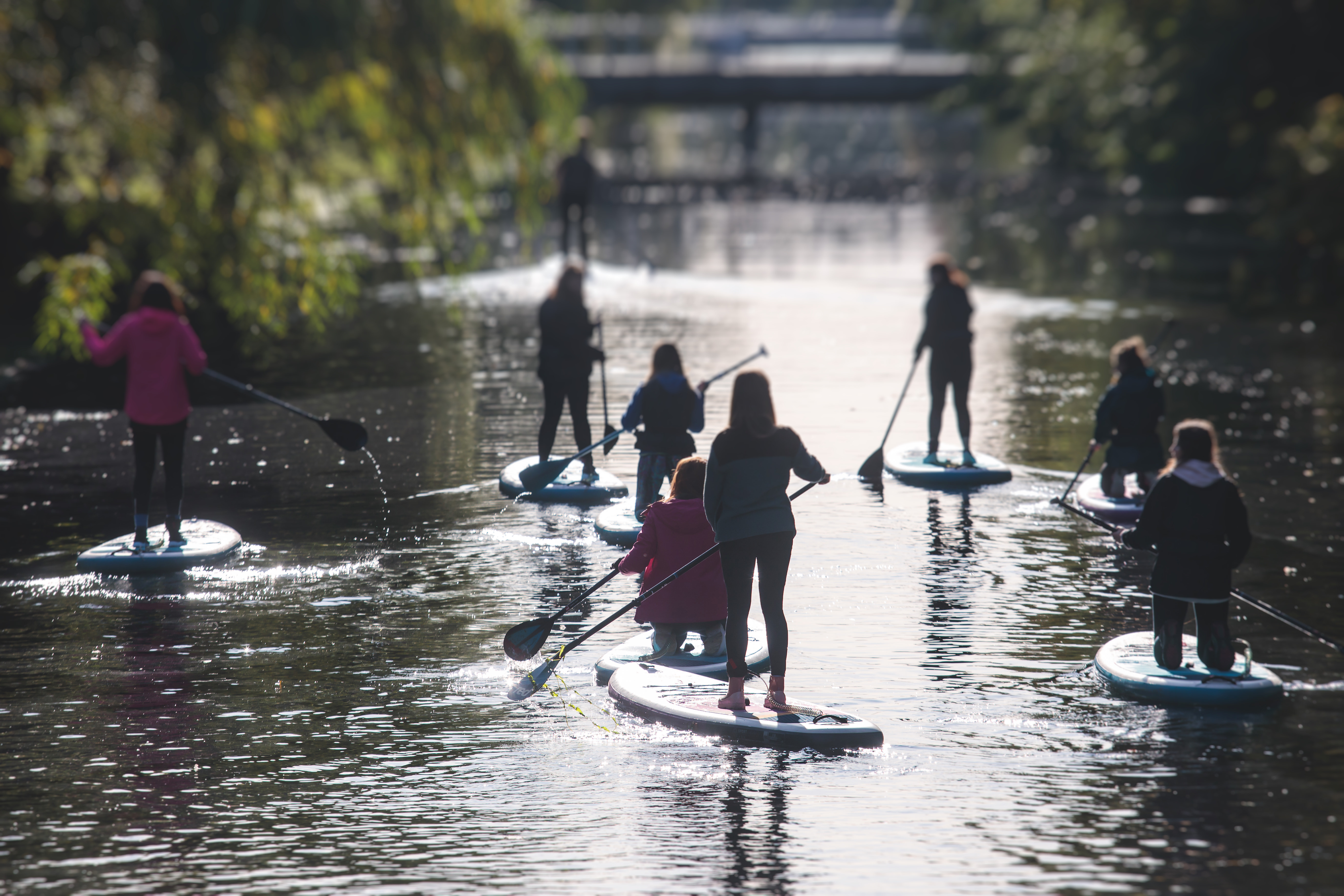 3hr Paddle Board Guided River Trip