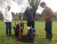 Planting of the Kings Cliffe Orchard