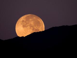 Full Moon/Lunar Eclipse in Leo