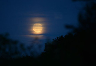 Full Moon, Lunar Eclipse and More...