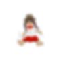 ragdoll logo.png