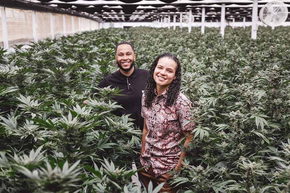 MD Numbers, Inc. - a black owned family of vertically integrated cannabis brands based in California