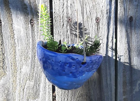 Hanging Blue Planter #2