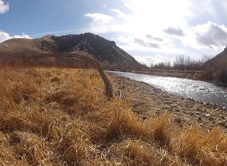 Fly Fishing Montana: Beaverhead River October