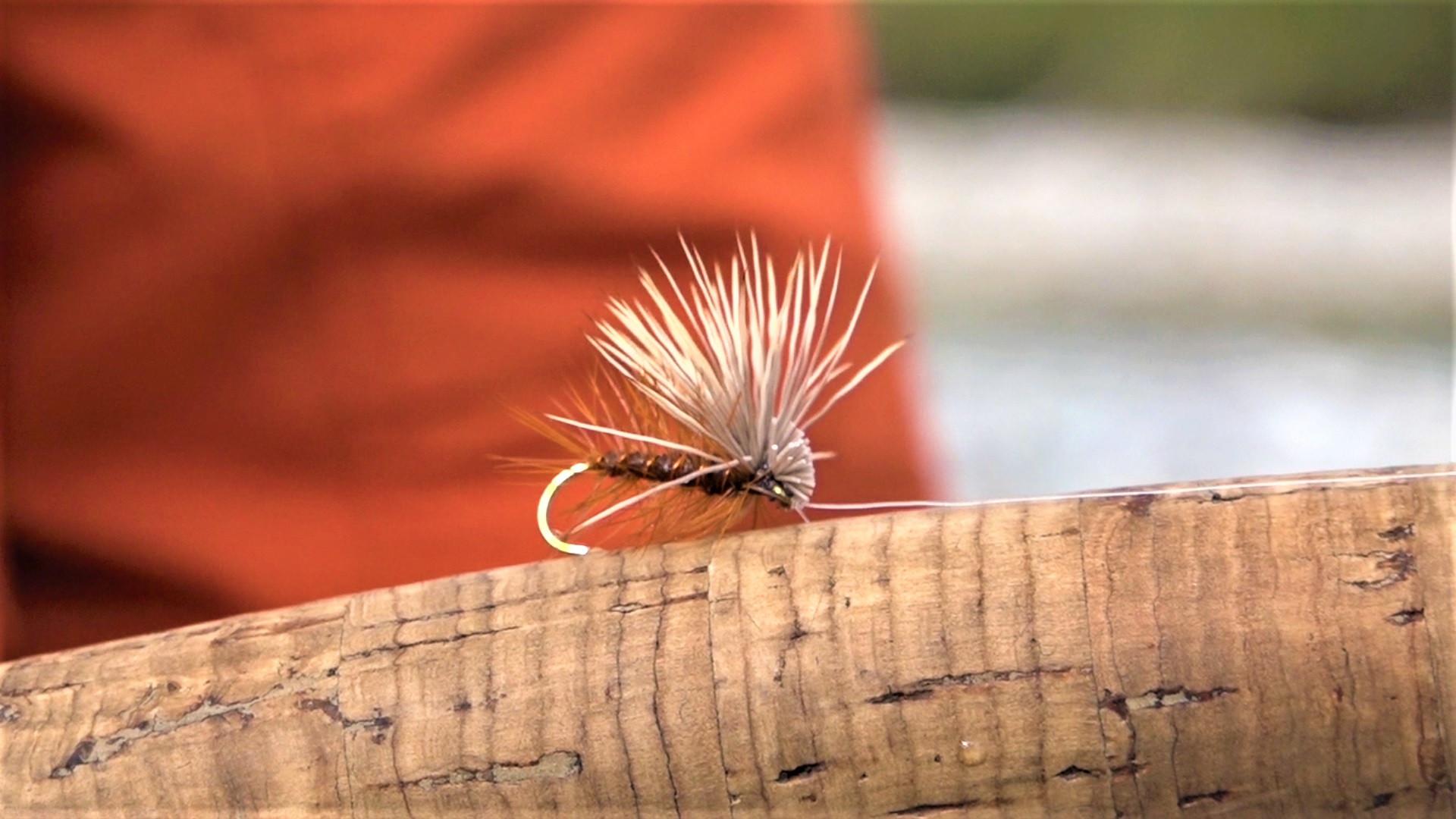 Fly Fishing British Columbia Wigwam Rive