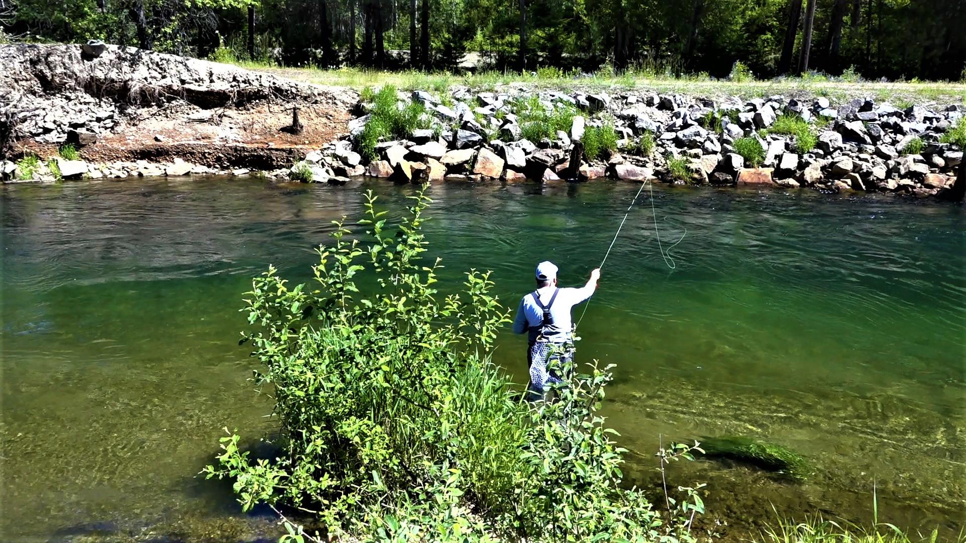 Fly Fishing Idaho South Fork CDA Julyweb