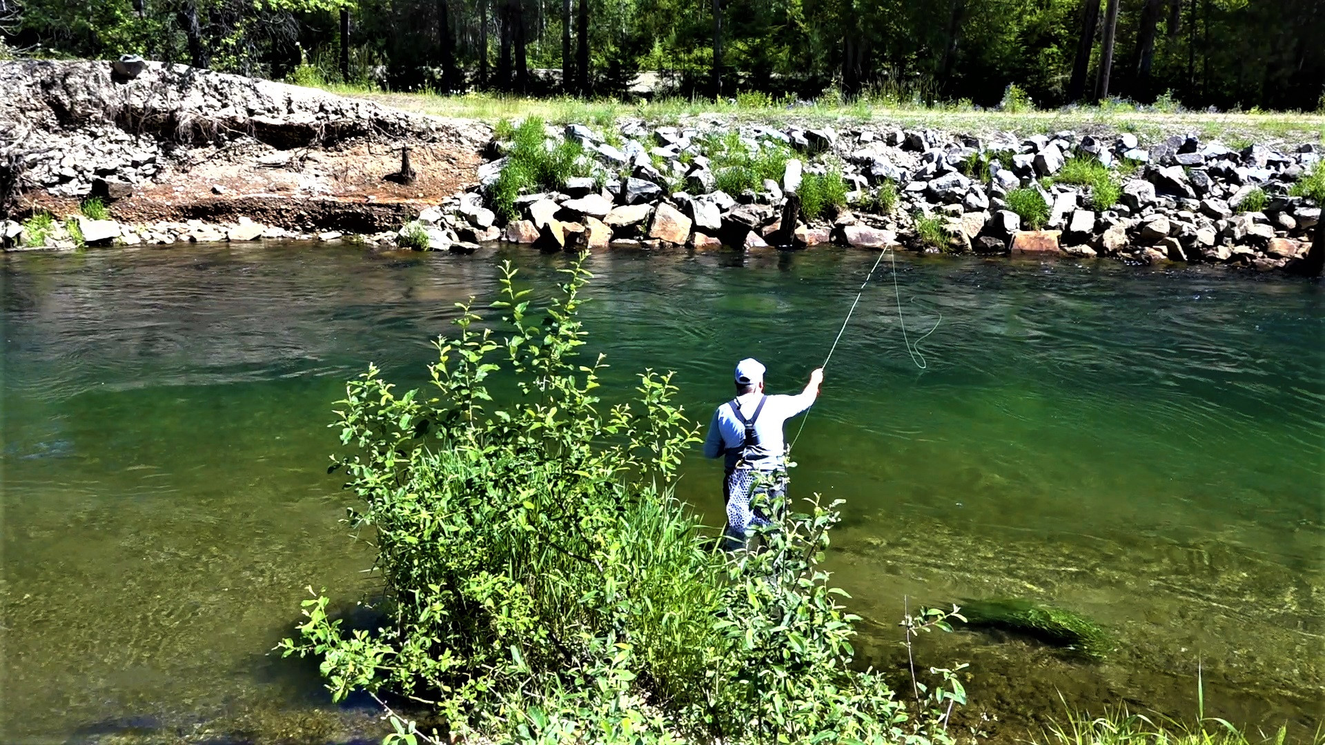 Fly Fishing Idaho South Fork CDA Julyweb