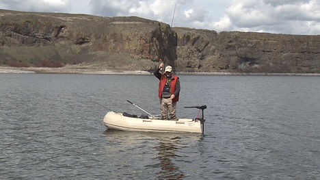 Dogfish Boats 2.jpg