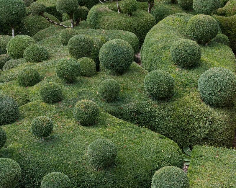 Marquayssac Gardens