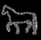 Pferd weiss auf schwarz.tif