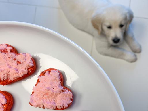 valentine's day dog treats