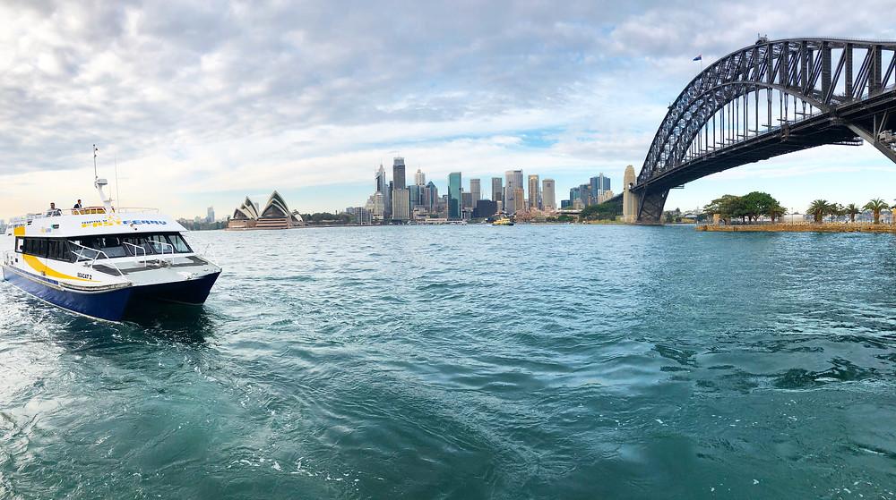 best views of the harbour bridge