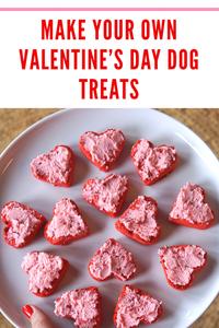 Healthy Dog Treat Recipe