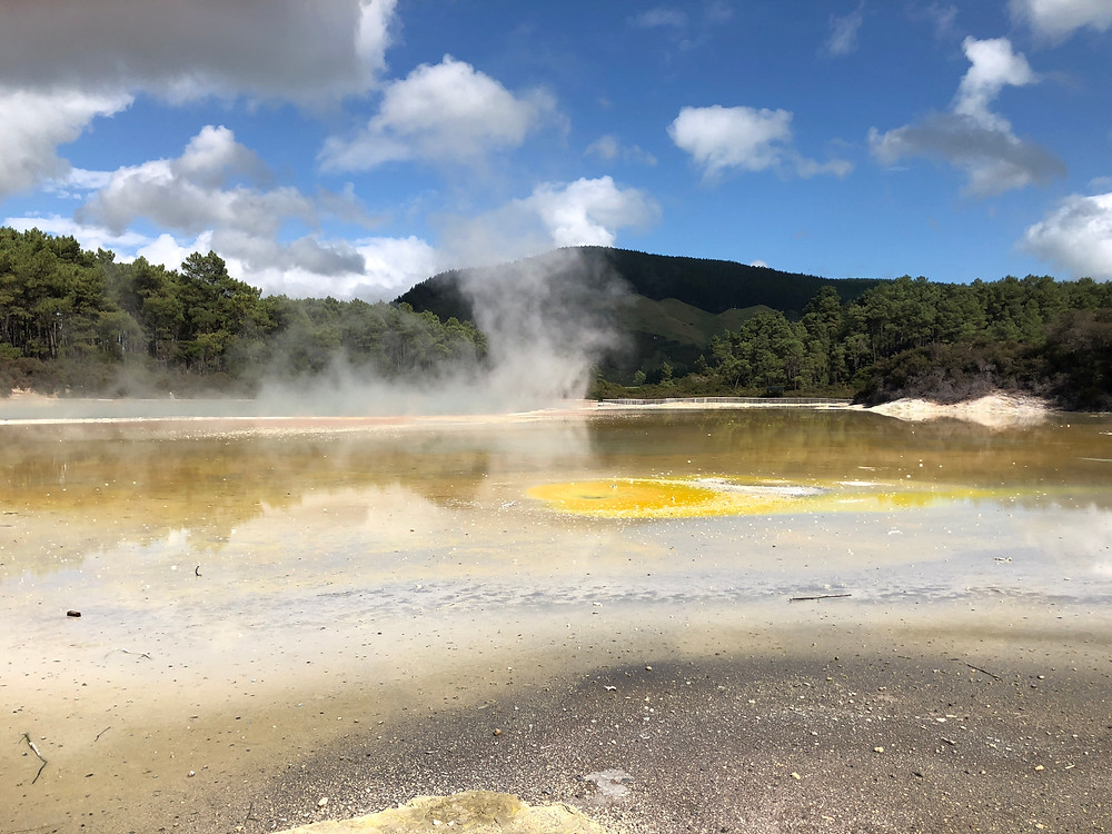 best geo thermal parks new zealand