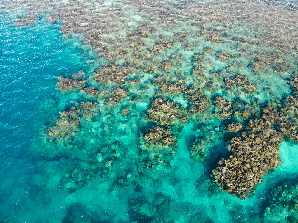 great barrier reef travel guide