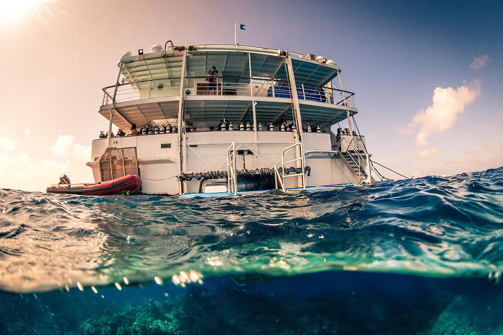 best great barrier reef liveaboard