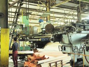 Permint Plywood mula beroperasi, hanya separuh tenaga kerja