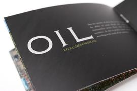 Alonso - Brochure