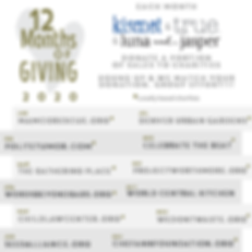 12MonthsofGiving2020_Social-All.png