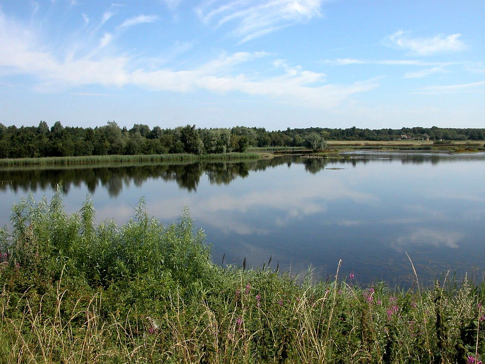 Main lake3.JPG