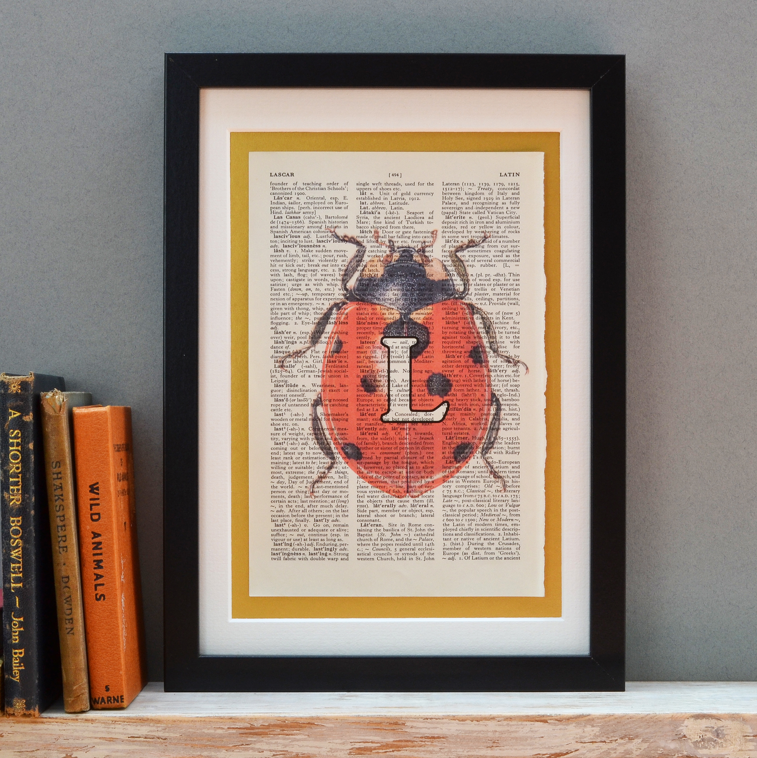 Ladybird Letter Print