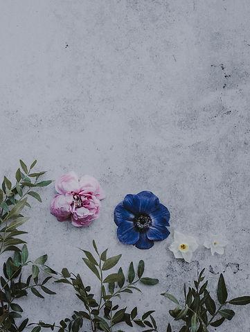 blümchen_annie-spratt-525814-unsplash.jp