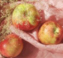 aepfel.jpg
