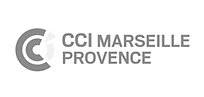 Logo CCIMP